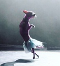 Lindsey Stirling фото #21