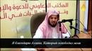 Предсмертная записка Имама аль-Газали | Хамис аз-Захрани