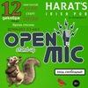 Открытый микрофон в Harat's Irish Pub