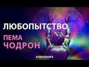 Аудиокнига ЛЮБОПЫТСТВО Пема Чодрон