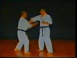 Hojo Undou-no Bunkai - Uechi-ryu