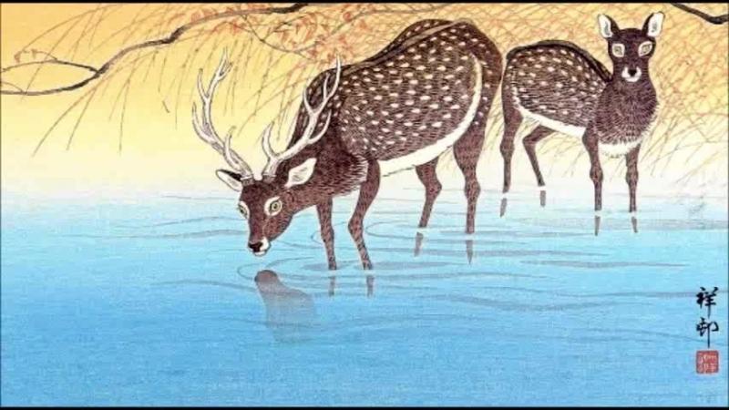 Японская гравюра. Охара Косон.