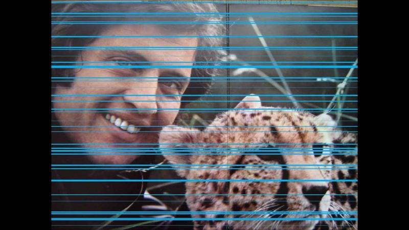 Joe Dassin - Un petit air de musique.