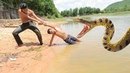 Real Anaconda Attacks Two Brother While Swimming In The River - Boy Vs Anaconda