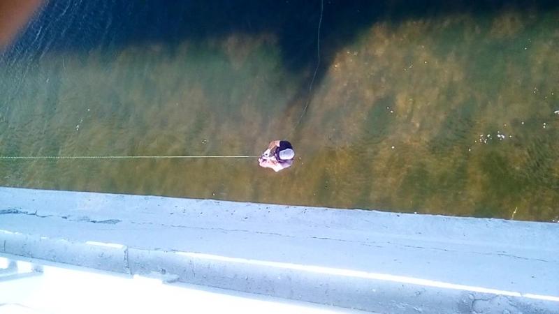 заныр с моста