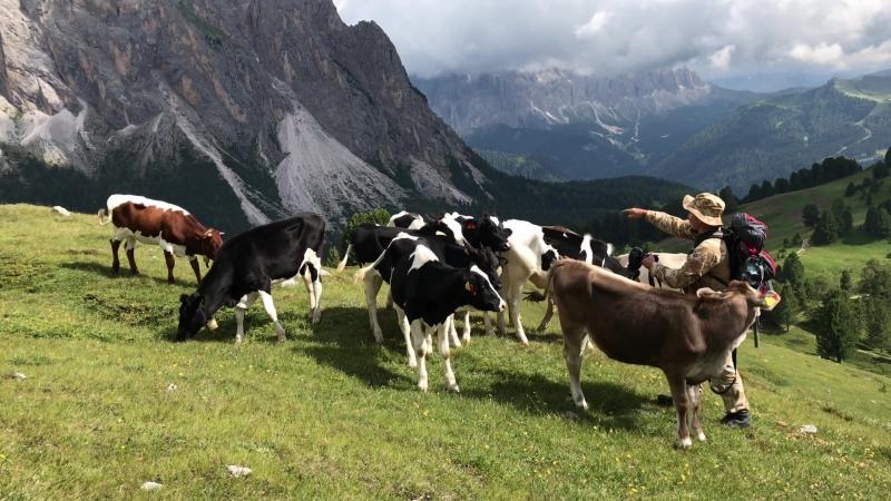 Фотошкола Черкассы - мы открыли филиал в Альпах -)