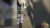 Студент из Бурятии привёз в Новосибирск 8 кг «синтетики»