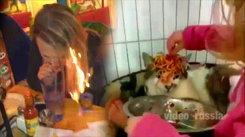 5 минут РЕАЛЬНО СМЕШНЫХ ПРИКОЛОВ - спалила волосы и очень терпеливый кот