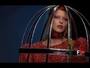 AGATHA RUIZ DE LA PRADA Fall 2009/2010 Milan - Fashion Channel