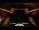 DJ Weirdo Dr Phil Omanski - Young Birds (Project Stigma Remix)