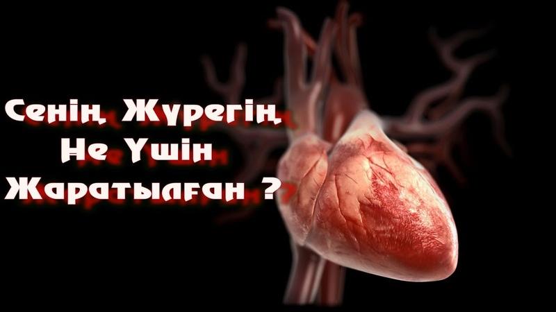 Жүрегіміз Жәннат Үшін Жаралған /Ерлан Ақатаев ᴴᴰ