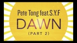 Pete Tong feat. S.Y.F. - Dawn (Blondish Remix)