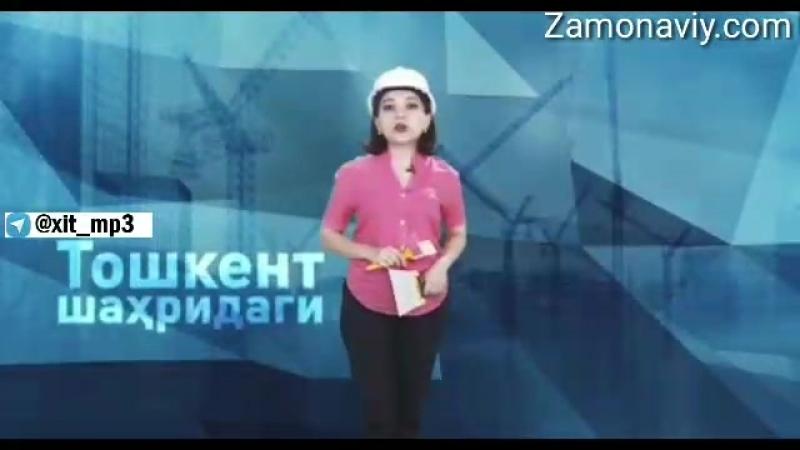 Top 500 chilar Toshkentni qanday o'zgartirmoqchi O'zi nima gap oydinlik kiritadi
