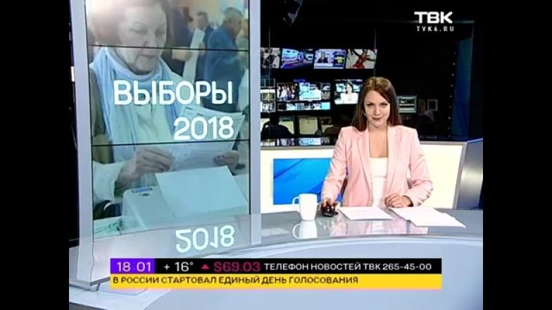 Специальный выпуск Новостей ТВК: Выборы 17:55
