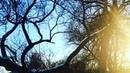 """Анна Тронина💕🌺🌺🌸🌸 on Instagram: """"❄️❤️🥰 Ирина Самарина-Лабиринт, 2014 г. .  стихилюбовьлириказимановыйгодвлюбленныесердцазимнееутроценитетех..."""