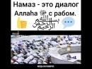 Instagram_muslims_grupp_42030425_2087960474787325_2946493435030274048_n.mp4
