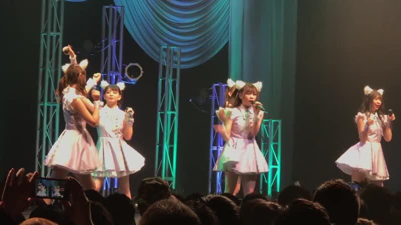 WaSuta 「IDOL CONTENT EXPO @TSUTAYA O-EAST ~Spring Premium Live~」 @TSUTAYA O-EAST 09042019