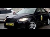 Честное авто: отзыв Skoda Octavia