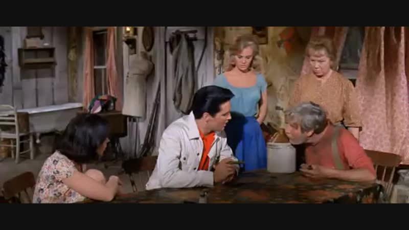 Kissin Cousins (1964)