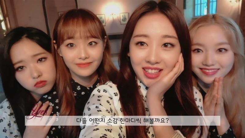 이달의소녀탐구 354 (LOONA TV 354)