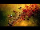 Bassnectar - Butterfly.mp4