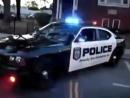 Копы тоже любят реп! NYPD vs 50 Cent Candy Shop