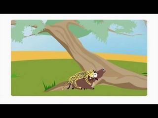 Леопард мультфильм про диких кошек Panthera pardus