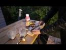 Размножение гиацинта и нарцисса парными чешуйками