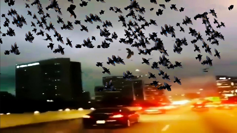 END TIMES SIGNS LATEST STRANGE EVENTS SEP 20 2018 THIS HAPPENED ON OUR EARTH EXTREME WEATHER