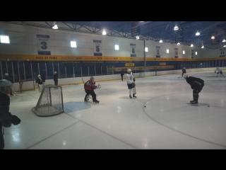 Тренировка команды НХЛ Сент-Луис Блюз / Saint Louis Blues NHL team training