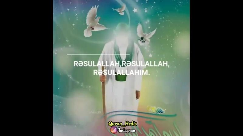 _zehra_asiqi_83_video_1531639511783.mp4