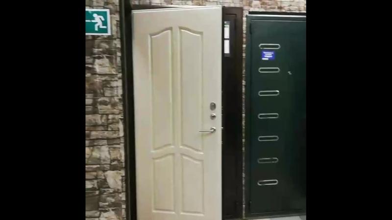 Стальная дверь Гардиан ДС10