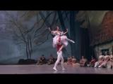 11.10.2015 Bolshoi Theatre, Giselle, Peasant Pas de deux, Igor Tsvirko, Daria Khokhlova Игорь Цвирко, Дарья Хохлова