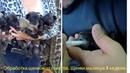 Обработка щенков от глистов Щенки малинуа 3 недели Дегельминтизация щенков
