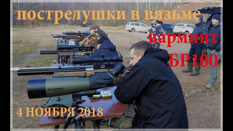 Пострелушки в Вязьме 04.11.2018 ВАРМИНТ и БР100 на кучность