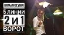 Дизайн Человека 2 и 1 ворота 5 линии Даниил Трофимов Human Design