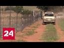 В Южной Африке убита женщина из числа белых фермеров Россия 24