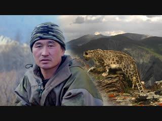 Почему охотники стали хранителями снежного барса на Алтае