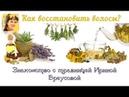 Встреча с травницей Ириной Бреусовой