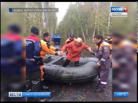Вести Санкт-Петербург. Выпуск 20:45 от 1.10.2018