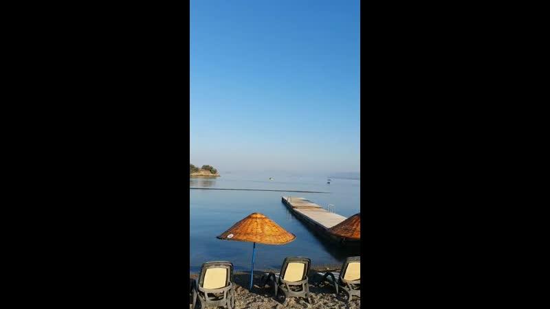 VIDEO-2019-07-20-07-39-30.mp4