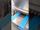 Двухбункерная тесто отсадочная машина МОТ-250-2РС - ООО Компания Микс