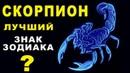 10 ПРИЧИН ПОЧЕМУ СКОРПИОН ЛУЧШИЙ ЗНАК ЗОДИАКА ♏ СЛОЖНЫЙ ХРАБРЫЙ И РЕШИТЕЛЬНЫЙ Гороскоп Скорпион