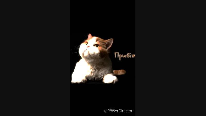 Мій_домашній_улюбленець(1)_HD.mp4