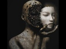 Humanos sin alma o Portales Organicos Portales Orgánicos El cuerpo y alma son dos cosas separadas