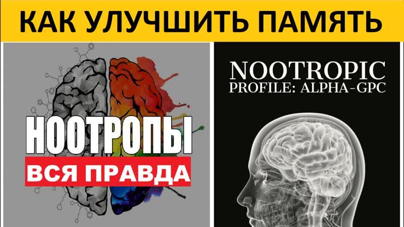 Самый сильный ноотроп Alpha GPC мышление память мотивация Alpha GPC Scientific Review