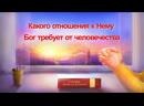 Слово Божье «Сам Бог уникален. Часть X Бог – источник жизни всего сущего (IV)» Глава 4