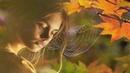 КРАСИВАЯ ПЕСНЯ! О ЛЮБВИ ПОСЛУШАЙТЕ!... Дождь из листьев - Андрей Усов