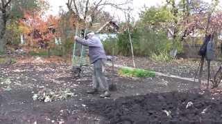 Куда деть листья и корни капусты. Осенняя перекопка огорода.