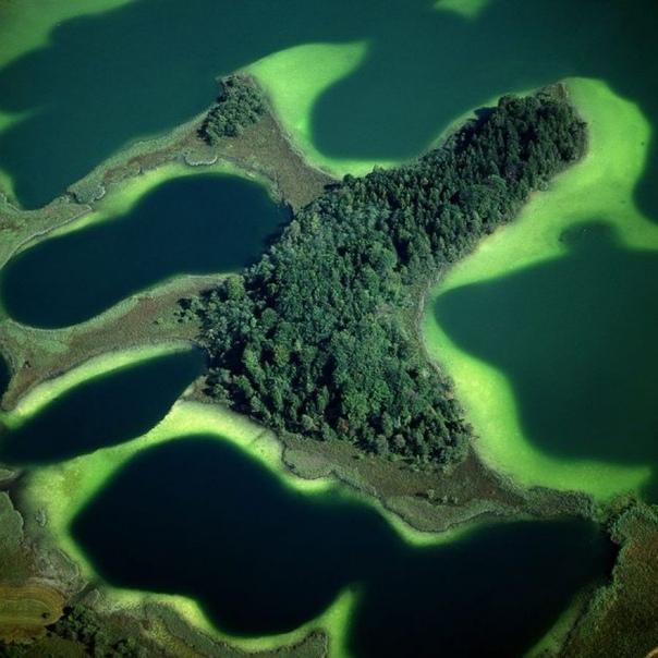 Большое озеро Остерзее  водные растения придают пологим берегам этого озера на юге Германии изумрудный цвет